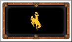 Wyoming Cowboys Pool Table Felt
