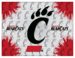 "Cincinnati Canvas Art w/ Bearcats Logo - 15"" x 20"" Print"